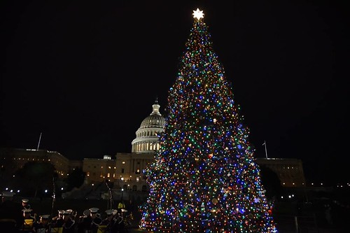 senator jon tester kicked off the holiday season tonight alongside bozeman sixth grader ridley brandmayr as they lit the us capitol christmas tree