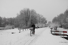 Keep calm and ride in the winter (Peter Jaspers) Tags: frompeterj© 2017 olympus zuiko omd em10 1240mm28 winter snow bike fence fenced happyfencefriday hff track red sign schollebos capelleaandenijssel cold holland netherlands