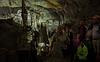 Tour Group (DCZwick) Tags: cave cavern stalactite stalagmite column cathedralroom lewisandclarkcaverns montana mt usa unitedstates pentaxk3 sigma1835art