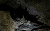 Looking Up (DCZwick) Tags: cave cavern stalactite stalagmite column cathedralroom lewisandclarkcaverns montana mt usa unitedstates pentaxk3 sigma1835art