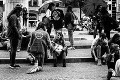 cheche-20170905264-Editar.jpg (_cheché_) Tags: paisesbaixos feiras17 bn amsterdam street