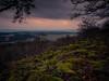Storm rolling in... (davYd&s4rah) Tags: forest tree wald baum moos stone steine sky clouds dark longtime langzeitbelichtung autumn herbst green fall em10markii m1240mm f28 olympusm1240mmf28 olympus