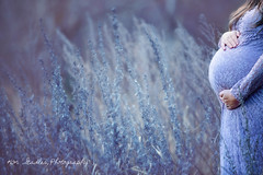7R4A5267 web (kim stadler) Tags: spokane photographer kim stadler photography pnw pacific northwest winter maternity portraits pregnant woman family washington purple
