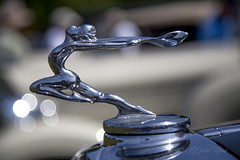 On Top Of It (david.horst.7) Tags: mascot ornament cap car auto automobile detail