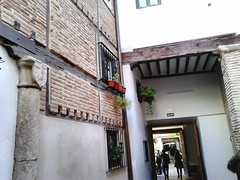 Antezana Hospital, founded 1483, Alcala de Henares , Madrid (d.kevan) Tags: spain madrid alcaladehenares hospitaldeantezana brickwork woodwork pillars decorativedetails plants stonework details 1483 potplants courtyards coatsofarms