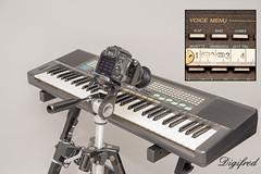 Making Of Musical Instruments. (Digifred.) Tags: macromondays musicalinstruments digifred 2017 hmm nederland netherlands nikond500 makingof macro macrophotography keyboard closeup