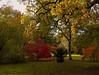 Arboretum (Jim Waldron) Tags: westonbirt autumn arboretum