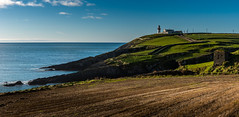 Galley Head (Peter Quinn1) Tags: galleyhead galleyheadlighthouse cork westcork atlantic rosscarbery lighthouse ireland