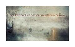 Serie du 01 06 17 : La charité sur Loire, the last. (basse def) Tags: textes words walls