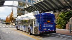 WMATA Metroway 2016 New Flyer Xcelsior XN40 #2981 (MW Transit Photos) Tags: wmata metroway new flyer xcelsior xn40