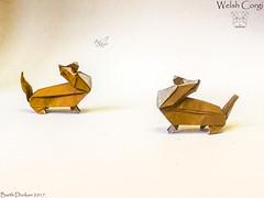 Oru Welsh Corgi - Barth Dunkan. (Magic Fingaz) Tags: anjing barthdunkan chien chó dog hond hund köpek origami origamidog perro pies пас пес собака หมา 개 犬 狗
