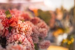 Morning market (Nathalie Le Bris) Tags: sanfrancisco market bokeh dof flower