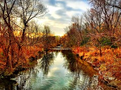 Morning 🏃 (shahzad.alvi) Tags: flickerfriday fall nyc gta apple iphoto ontario sun cold winter weekend sunrise iphone7plus pictureoftheday flicker water fallcolours november beautiful canada toronto mobilephotography iphone wednesday morning