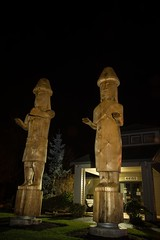 DSC_8153 (Copy) (pandjt) Tags: chilliwack bc britishcolumbia stólō stolo yakweakwioose firstnation yakweakwioosefirstnation terryhorne chiefterryhorne welcomefigures welcome sculpture carving publicart nightphotography longexposure lightpainting