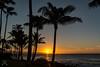 Napili Sunset-4513 (NWPaddler) Tags: 2017 hi hawaii maui napalibeach nikon sunset westmaui landscape tree palm sky ocean water dusk
