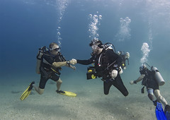 Deptherapy Diving camp Oct17 13 (KnyazevDA) Tags: deptherapy disability disabled diver diving undersea padi owd underwater redsea buddy handicapped aowd amputee rescue