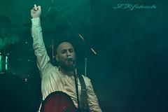 Árbol (liberusualis1) Tags: rock music nikon nikkor escenario banda musical stage guitarra cantante árbol luces concierto