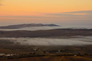 A sea of mist...