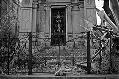 Santiago de Chile (Alejandro Bonilla) Tags: santiago street sony santiagodechile santiaguinos santiagochile streetphotography santiagocentro chile city ciudad chilenos urban urbano urbana urbe urbex