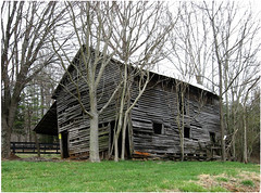 Enter at own risk or trees for crutches (cscott_va.) Tags: old abandoned virginia barn albemarle county