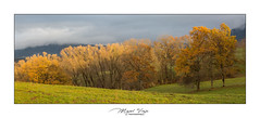Couleurs d'automne (Mig 74) Tags: champeillant paysage automne gavot atraiter lieux flickr 74