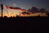 20171124_005_2 (まさちゃん) Tags: 富士山 雲 空 夕焼け空 夕焼け 高圧送電線 送電線 シルエット silhouette