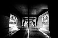Dimensions (tomabenz) Tags: human geometry france noiretblanc urban noir blanc monochrome architecture défense bnw paris bw streetview black white europe street photography sony a7rm2 ladéfense blackandwhite humaningeometry sonya7rm2 streetphotography