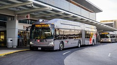 BWI Airport Rental Car Shuttle 2017 New Flyer Xcelsior XN60 #306 (MW Transit Photos) Tags: bwi airport rental car shuttle new flyer xcelsior xn60