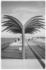 Passeig Volvo (Alejandro González i Mas) Tags: volvo volvooceanrace zonavolvo alacant alicante spain arquitectura bw blackandwhite mediterráneo mar sea