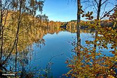 Am See (garzer06) Tags: herbst see landschaft wasser herbstlandschaft blau baum naturephoto deutschland mecklenburgvorpommern landschaftsfoto naturfoto landscapephot herbstzeit vorpommernrügen landscapephotography vorpommern himmel inselrügen naturphotography insel naturfotografie rügen landschaftsfotografie
