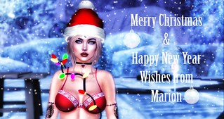 Merry Christmas & Happy New Year From Marion