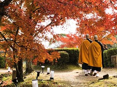 Daikaku-ji 大覚寺. Kyoto (H.L.Tam) Tags: 京都 life iphoneography sketchbook iphone8plus 大覚寺 autumn 嵯峨 streetphotography 日本 iphone daikakuji kyoto photodocumentary documentary japan japanese people 紅葉 日本人