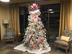 2017 YIP Day 335: Lobby Tree