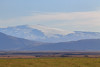 Eyjafjallajökull, Suðurland (South Iceland) (Mike Sirotin) Tags: grass landscape travelphotography nature suðurland volcano naturephotography white iceland iphoto eyjafjallajokull ice foothills travel landscapephotography fields southiceland eyjafjallajökull hills snow glacier ísland mountain