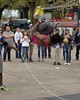 Jump Rope (swong95765) Tags: acrobatic jump flip rope audience entertainer