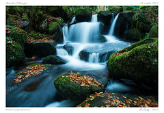 La vallée des Darots (BerColly) Tags: france auvergne puydedome vallée valley darots druides cascades falls automne autumn feuilles leaves eau water riviere river couzon ru arbres lumiere light bercolly google flickr