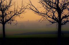 Die Morgensonne durchdringt den Novembernebel - The morning sun penetrates the November fog (cammino5) Tags: sonnenaufgang possenheim markteinersheim steigerwald morgennebel november 2017 franken bayern deutschland