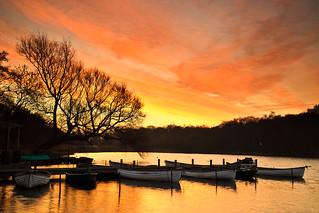 Rowing Boats at Dawn