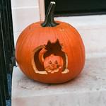 Pumpkin Art thumbnail