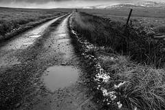 1920p 72dpi-3711-3 (R W Gibbens Photo) Tags: forestofbowland fells november lateautumn earlywinter latefall track path road hill blackandwhite lancashire england uk