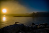 December Seatrout Hunt III (Brant He. Fageraas) Tags: flyfishingart flyfishing seatrout landscape seascape sunrise canon colors vollen oslofjorden norway foggy misty fog