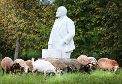Lenin and sheep (svklimkin) Tags: lenin monument revolution history svklimkin canon sheep shepherd autumn russia