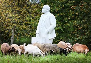 Lenin and sheep