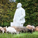 Lenin and sheep thumbnail