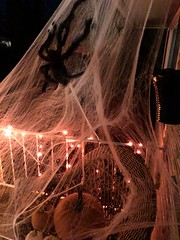Come A Little Bit Closer!!! (Reed 1949) Tags: halloween spider spiderwebs pumpkins porch railings outdoors creepy decorations nikon nikond5200 apple i phone 8 plus 399mm f 18
