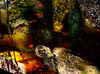 Caído (seguicollar) Tags: imagencreativa photomanipulación art arte artecreativo artedigital virginiaseguí figura caído sombras secretos misterio mistyc