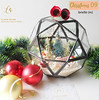 BRIELLE DIY (DO IT YOURSELF) LUXURY CHRISTMAS GIFT TERRARIUM HAMPERS (luxeova) Tags: luxeovachristmas luxeovahampers terrarium terrariums glassbox terrariumlove diychristmas terrariumart glassterrarium geometricterrarium australianflorist etsyseller londonflorist terrariumdesignnewyorkwedding australiawedding londonweddings christmashampers christmashamper christmasgift christmasgifts christmasgiftidea christmasgiftideas christmasgiftsideas christmasgiftguide christmaswedding proposal christmaspresent luxurygifts
