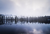 Fresh Air (laurilehtophotography) Tags: 2017 luontopolku nyrölä syksy suomi finland nature landscape autumn fall view lake mirror reflections trees forest clouds sun day nikon d610 tamron 2470mm amazing europe world luonto maisema taivas sky pilvet metsä järvi