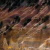 In Canyons 144 (noahbw) Tags: brycecanyon d5000 nikon utah abstract autumn canyon cliffs desert erosion hills landscape light natural noahbw ripples rock shadow square stone trees incanyons