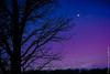 Twilight Moon (Larry E. Anderson) Tags: minnesota warnerlakecountypark astrophotography bluehour civiltwilight clouds cresentmoon ethereal expressivesky forest landscape longexposer moon seasons silhouette sky trees twilight waxingcresent winter
